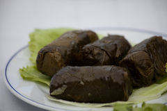 Dolmas. Delicious and original dolmas (greek appetizer with grape leaves stuffed with spiced rice Royalty Free Stock Photography