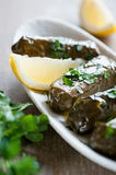 Dolmas Royalty Free Stock Photography
