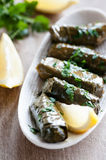 Dolmas Stock Images