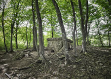 Dolmen in Adygea Fotografie Stock