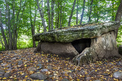 Dolmen in the forest Royalty Free Stock Image