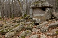 Dolmen in a forest royalty free stock images