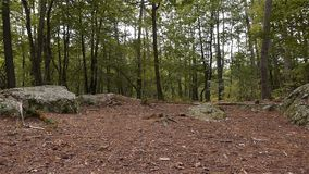 Dolmen Pierre Procureuse, omgeving rond steenstructuur in Normandië, PAN stock videobeelden