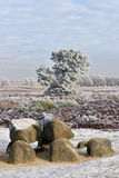 Dolmen in the Winter. Part of an ancient megalithic tomb in the province Drenthe, the Netherlands Royalty Free Stock Photo