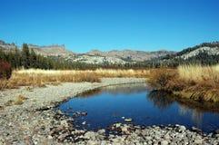 dolna strumień wody Obrazy Stock