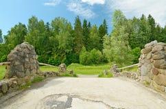 dolny lasu krajobrazu lato w górę widok Zdjęcia Royalty Free