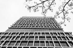 Dolny widok biznesowy budynku drapacz chmur, czarny i biały Obrazy Stock