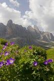 Dolomías en primavera Imagen de archivo libre de regalías