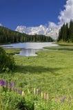 Dolomías Italia de Misurina del lago foto de archivo