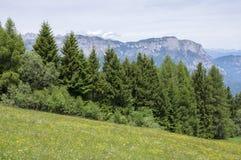Dolomia, alpi italiane, natura selvaggia Fotografia Stock Libera da Diritti