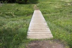 Dolomia, alpi italiane, pavimentazione di legno Immagine Stock Libera da Diritti
