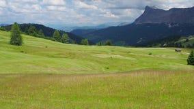 Dolomia, Italia Una prospettiva dei colori e delle forme di messa a terra Taglio agricolo dei campi di erba video d archivio