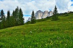 Dolomia italiane - osservi sulle montagne Monte Cristallo Immagine Stock