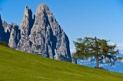 Dolomia, Seiser Alm - Italia Fotografia Stock