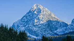 Dolomia superiori della montagna Fotografia Stock