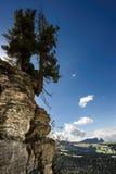 Dolomiet in de zomer Stock Foto
