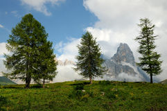 Dolomit-Alpen, Süd-Tirol, Italien Cimon-della Pala oder Cimone mit Wolken in Pale di San Martino Group Stockfotografie