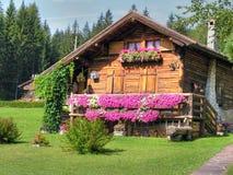 Dolomit-Berge, Italien, Sommer 2009 Stockfotografie