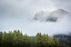 Dolomit in einem Nebel lizenzfreies stockbild