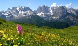 Dolomit Italien Lizenzfreie Stockbilder