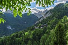 Dolomit-Wald Lizenzfreie Stockfotos