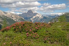 Dolomite, Italy Royalty Free Stock Photos