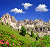 Dolomite peaks, Rosengarten Royalty Free Stock Image