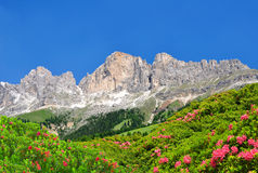Dolomite peaks Rosengarten Royalty Free Stock Photos