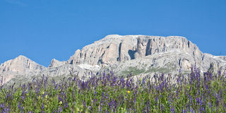 In the Dolomites Royalty Free Stock Photo