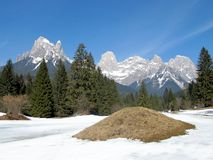 Dolomites. The Pale di San Martino, a group of dolomites Royalty Free Stock Photo