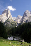 Dolomites. Mountains and trees in the Dolimites, Italy Royalty Free Stock Image