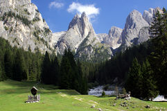 Dolomites. Mountains and trees in the Dolimites, Italy Royalty Free Stock Photos