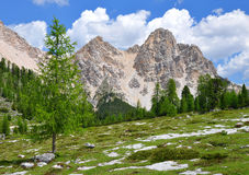 Dolomites Alps- Italy Royalty Free Stock Photography