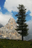 Dolomites Alps, South Tyrol, Italy. Cimon della Pala or Cimone with clouds in the Pale di San Martino Group. Stock Image