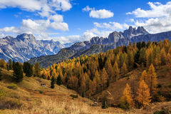Dolomites autumn in Passo Falzarego royalty free stock photography