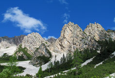 Dolomites beautiful rocky peaks above green forest Stock Images