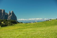 Dolomites - Blooming Meadow Stock Photos