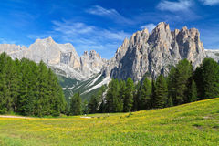 Dolomites - Catinaccio mount Royalty Free Stock Photo