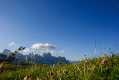 Dolomites d'aube Image libre de droits