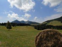 Dolomites de Brenta de la fenêtre Image stock