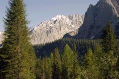 Dolomites i fjädern Arkivbild