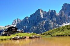 Dolomites inhyser och sjön Arkivfoton