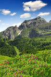 Dolomites Italy Stock Photos