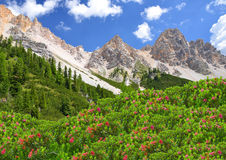 Dolomites - Italy Royalty Free Stock Photography