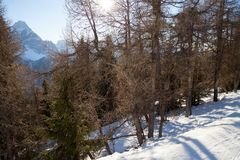 Monte Elmo, Dolomites, Italy - Mountain skiing and snowboarding. Sexten (Sesto), Trentino-Alto Adige, Alta Pusteria. Dolomites, Italy - Sexten Sesto stock photos