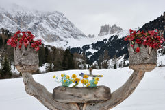 Dolomites mountain and flowers. Wood vase of flowers and view on the Dolomites mountain Stock Image