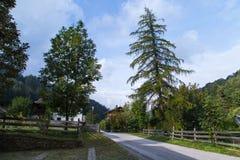 Dolomites mountain scenery Royalty Free Stock Photos