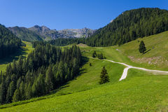 Dolomites mountain in summer Royalty Free Stock Photography