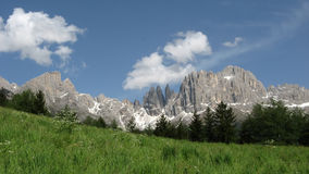 Dolomites - Rosengarten. The Rosengarten is famous because of the mountainrange and flowering alps at the base of the mountains Royalty Free Stock Images