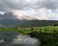 Dolomites - Rosengarten mountain range Stock Image